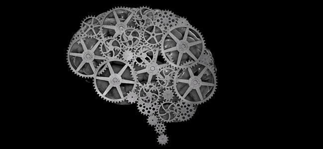 cerebro-site